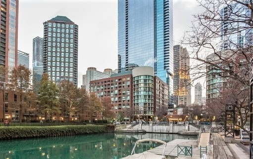 1 Bedroom, Streeterville Rental in Chicago, IL for $2,075 - Photo 1