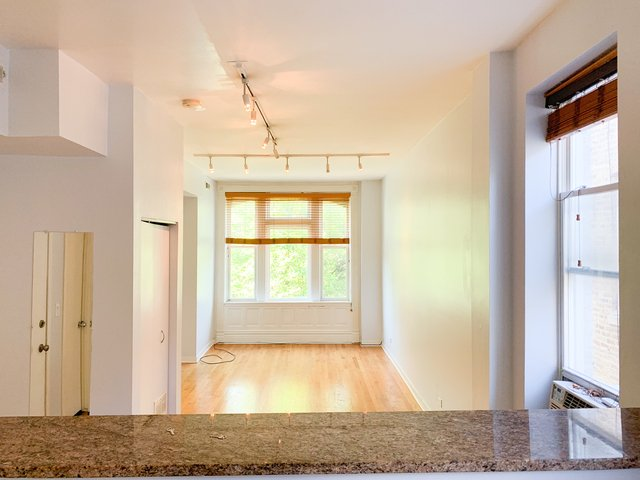 1 Bedroom, West Town Rental in Chicago, IL for $1,500 - Photo 2