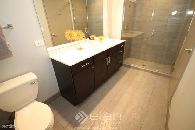 2 Bedrooms, Streeterville Rental in Chicago, IL for $4,180 - Photo 2