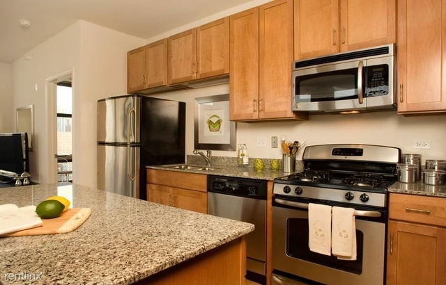1 Bedroom, South Loop Rental in Chicago, IL for $2,671 - Photo 2