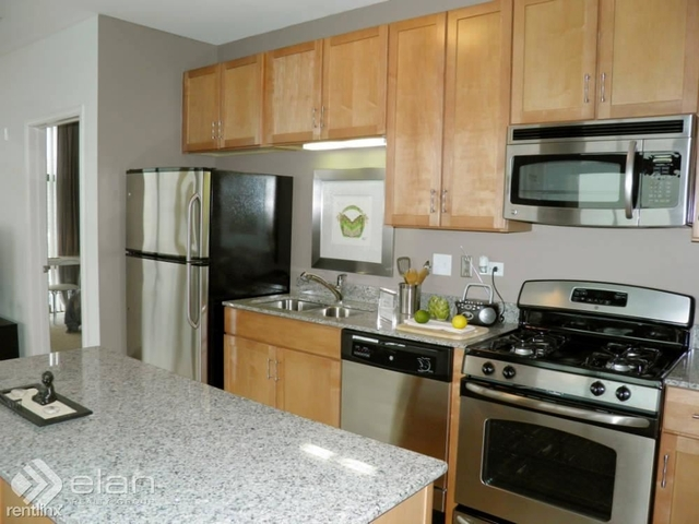2 Bedrooms, South Loop Rental in Chicago, IL for $2,897 - Photo 1