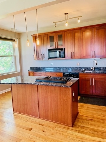 2 Bedrooms, Ukrainian Village Rental in Chicago, IL for $2,385 - Photo 2