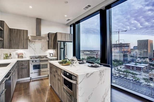 2 Bedrooms, Downtown Houston Rental in Houston for $4,000 - Photo 1