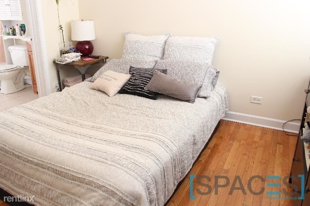 2 Bedrooms, Ukrainian Village Rental in Chicago, IL for $1,795 - Photo 2