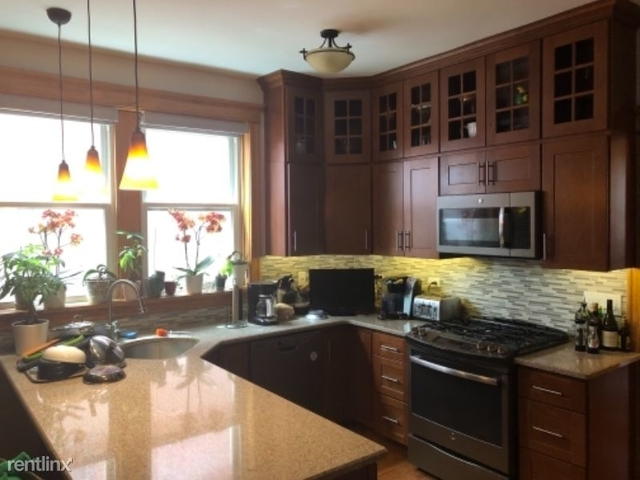 3 Bedrooms, Ukrainian Village Rental in Chicago, IL for $2,700 - Photo 1
