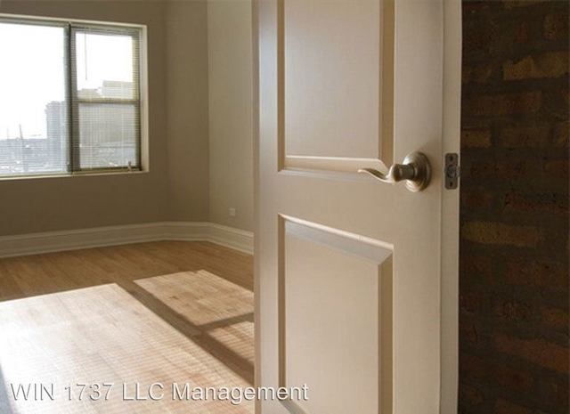1 Bedroom, Woodlawn Rental in Chicago, IL for $1,250 - Photo 2