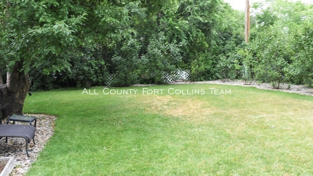 3 Bedrooms, Sheely Rental in Fort Collins, CO for $1,675 - Photo 2