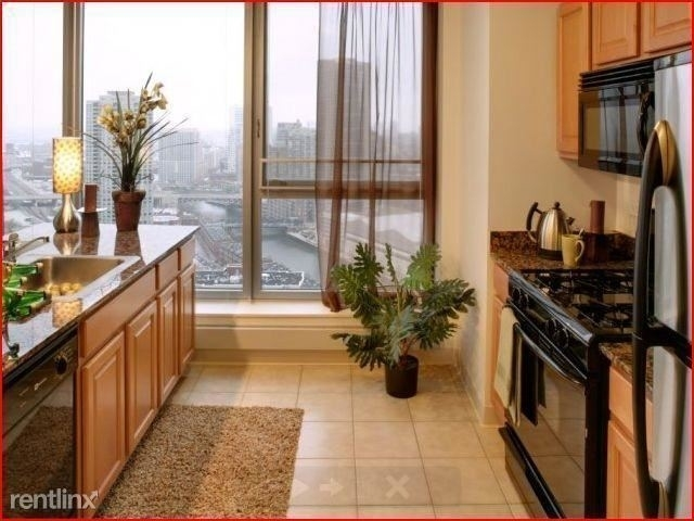 1 Bedroom, Fulton River District Rental in Chicago, IL for $2,747 - Photo 2