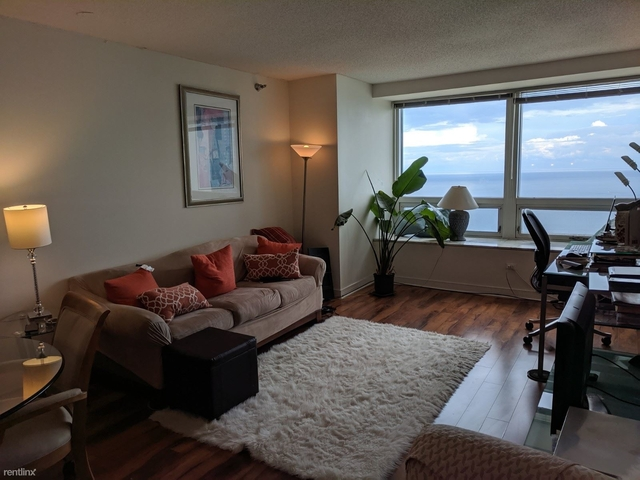 1 Bedroom, Streeterville Rental in Chicago, IL for $2,200 - Photo 2