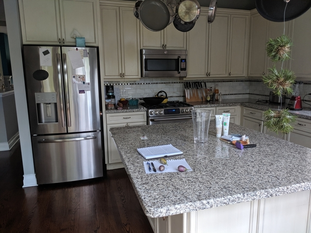4 Bedrooms, Dearborn Park Rental in Chicago, IL for $4,900 - Photo 2