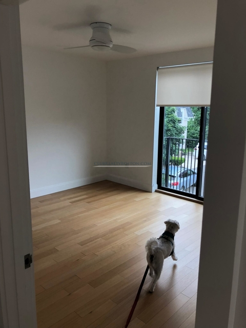 1 Bedroom, Mission Hill Rental in Boston, MA for $3,006 - Photo 2
