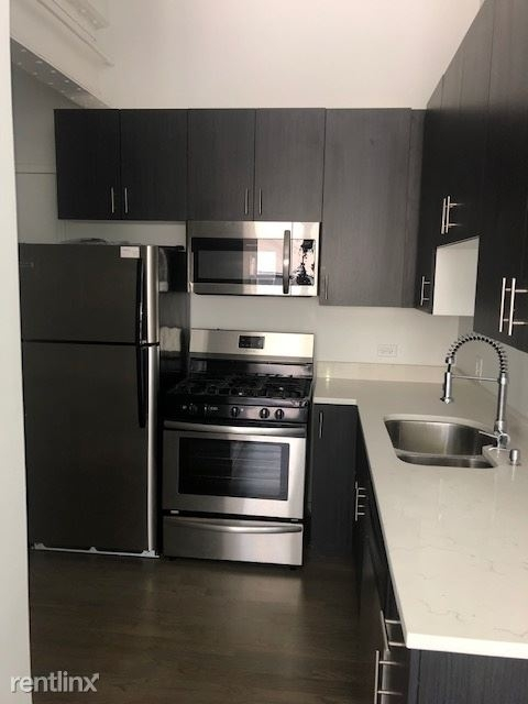 1 Bedroom, Fulton River District Rental in Chicago, IL for $1,850 - Photo 2