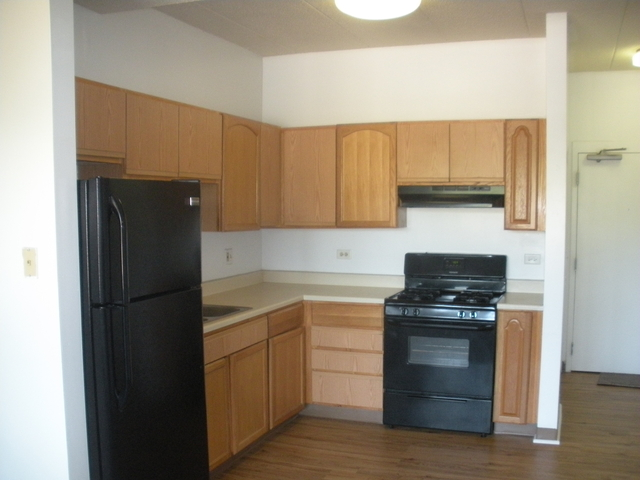 2 Bedrooms, Grand Boulevard Rental in Chicago, IL for $995 - Photo 1