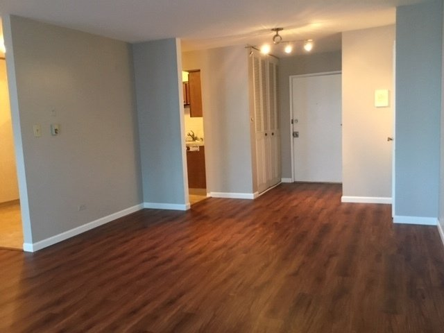1 Bedroom, South Shore Rental in Chicago, IL for $1,150 - Photo 2