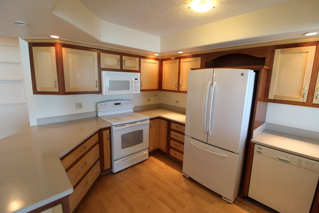 3 Bedrooms, Near East Side Rental in Chicago, IL for $4,000 - Photo 2