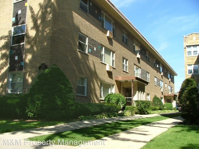 2 Bedrooms, Oak Park Rental in Chicago, IL for $1,335 - Photo 1