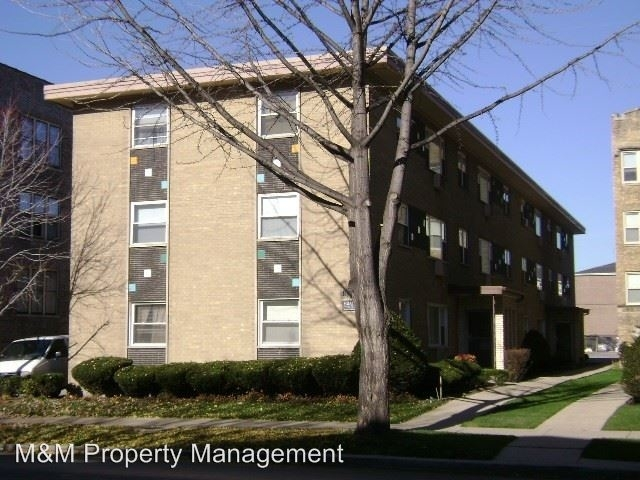 2 Bedrooms, Oak Park Rental in Chicago, IL for $1,335 - Photo 2