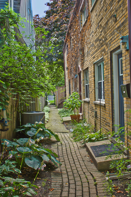 3 Bedrooms, Palmer Square Rental in Chicago, IL for $2,475 - Photo 1