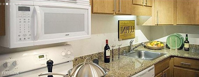 1 Bedroom, Government District Rental in Dallas for $1,169 - Photo 2
