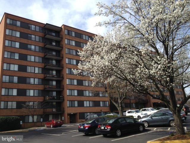 3 Bedrooms, Waverly Hills Rental in Washington, DC for $2,600 - Photo 2