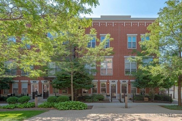 3 Bedrooms, Douglas Rental in Chicago, IL for $2,650 - Photo 1