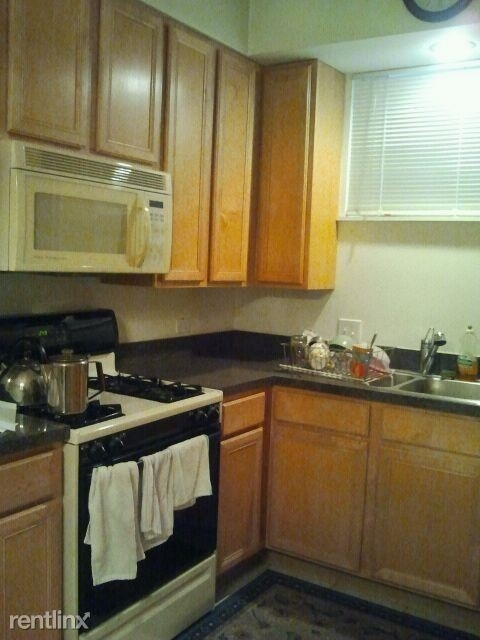 2 Bedrooms, Fulton Market Rental in Chicago, IL for $1,600 - Photo 2