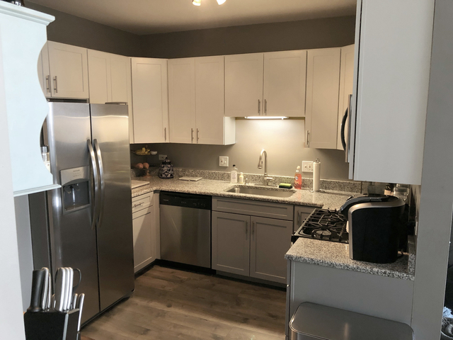 1 Bedroom, Near North Side Rental in Chicago, IL for $2,300 - Photo 2