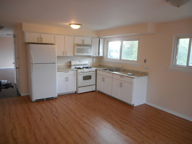 3 Bedrooms, Riverdale Rental in Chicago, IL for $1,300 - Photo 2