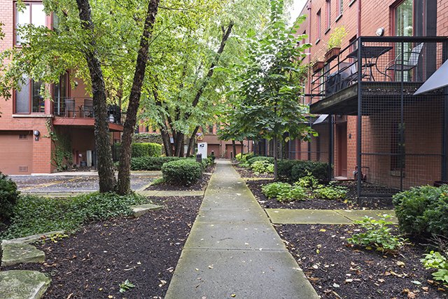 1 Bedroom, Dearborn Park Rental in Chicago, IL for $1,950 - Photo 2