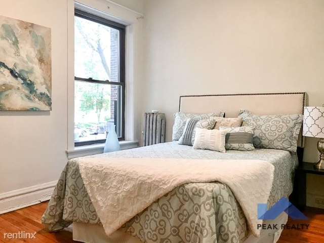 2 Bedrooms, Hyde Park Rental in Chicago, IL for $1,525 - Photo 2