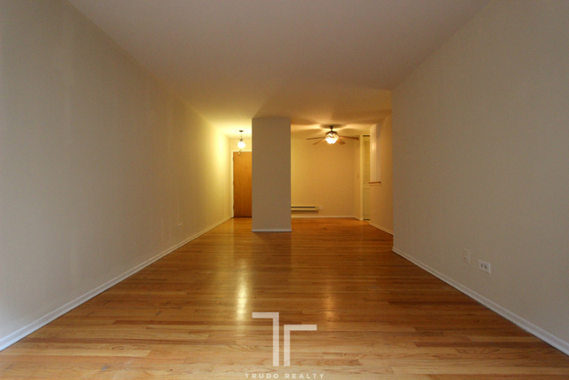 1 Bedroom, Park West Rental in Chicago, IL for $1,295 - Photo 2