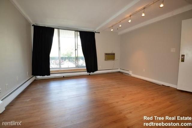 2 Bedrooms, Washington Square Rental in Boston, MA for $2,600 - Photo 2
