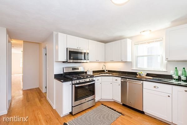 3 Bedrooms, South Side Rental in Boston, MA for $2,700 - Photo 2