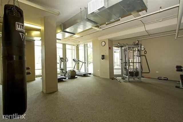 2 Bedrooms, Cabrini-Green Rental in Chicago, IL for $2,600 - Photo 2