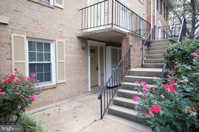 2 Bedrooms, Penrose Rental in Washington, DC for $2,395 - Photo 1