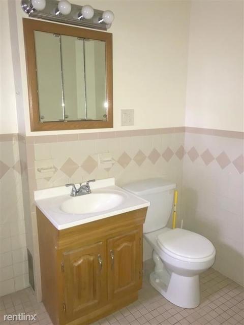 2 Bedrooms, Ten Hills Rental in Boston, MA for $2,000 - Photo 2