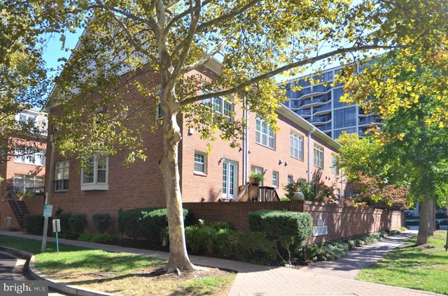 3 Bedrooms, North Rosslyn Rental in Washington, DC for $4,500 - Photo 2