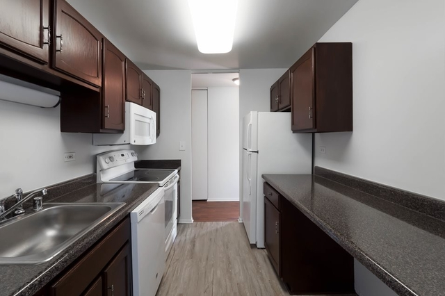 1 Bedroom, Gold Coast Rental in Chicago, IL for $2,435 - Photo 1