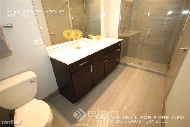 2 Bedrooms, Streeterville Rental in Chicago, IL for $4,135 - Photo 2