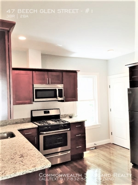 3 Bedrooms, Highland Park Rental in Boston, MA for $3,300 - Photo 1