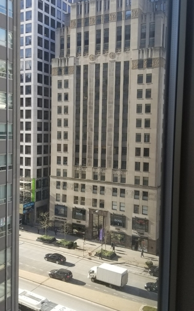1 Bedroom, Magnificent Mile Rental in Chicago, IL for $1,750 - Photo 2