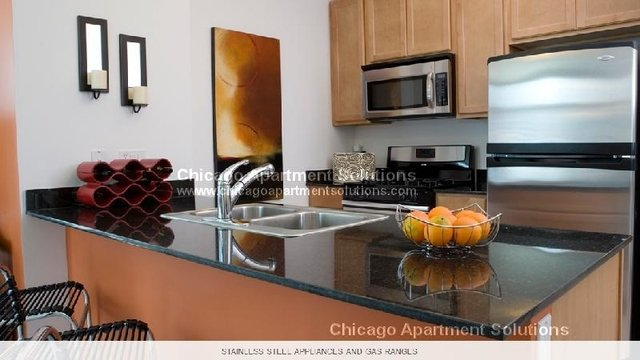 3 Bedrooms, Streeterville Rental in Chicago, IL for $8,060 - Photo 1