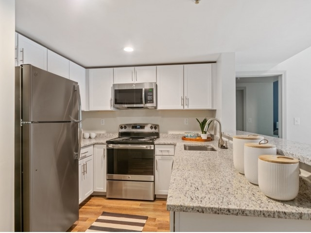 1 Bedroom, Maplewood Highlands Rental in Boston, MA for $1,900 - Photo 2