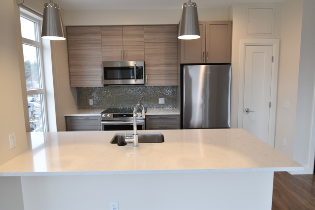 2 Bedrooms, Newtonville Rental in Boston, MA for $5,855 - Photo 2