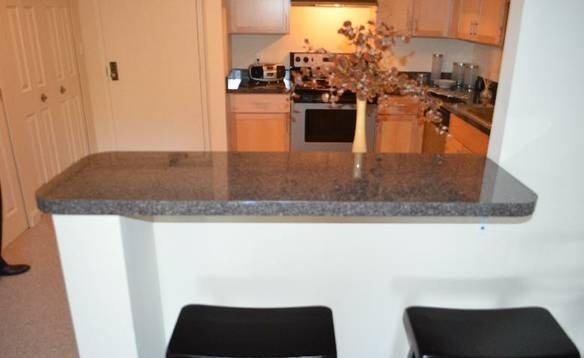 1 Bedroom, Quincy Point Rental in Boston, MA for $1,750 - Photo 2
