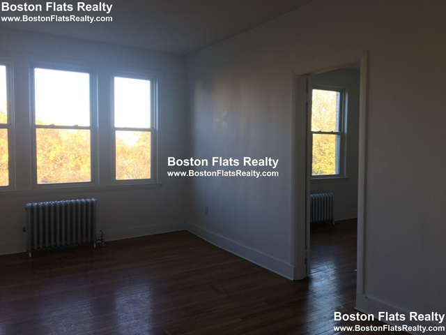 3 Bedrooms, Dudley - Brunswick King Rental in Boston, MA for $2,100 - Photo 2