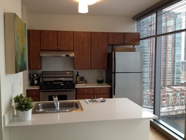 2 Bedrooms, Near East Side Rental in Chicago, IL for $2,797 - Photo 1