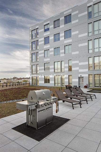 2 Bedrooms, Washington Park Rental in Boston, MA for $3,906 - Photo 1