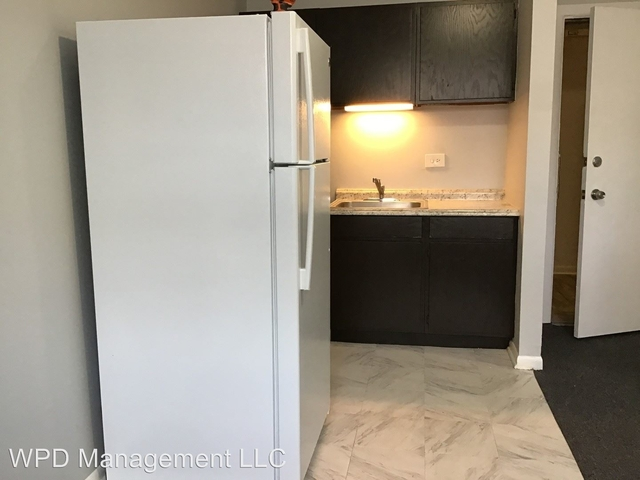 1 Bedroom, South Shore Rental in Chicago, IL for $1,100 - Photo 1