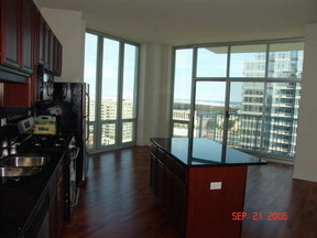 2 Bedrooms, Prairie District Rental in Chicago, IL for $2,500 - Photo 1